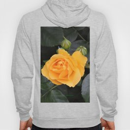 "A Rose Named ""Julia Child"" Hoody"