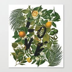True Love (Oranges) Canvas Print