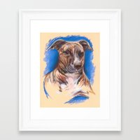 pit bull Framed Art Prints featuring Brindle Pit Bull Portrait by M.M. Anderson Designs