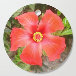 Head On Shot of a Red Tropical Hibiscus Flower Cutting Board