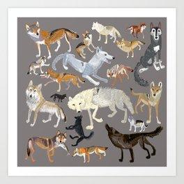 Wolves of the world (c) 2017 Art Print