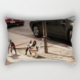 Boston Terriers ~ amped up for action! Rectangular Pillow