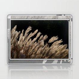 YAKU JIMA GRASS IN BACKLIT SUN Laptop & iPad Skin