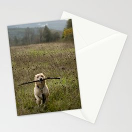 Fetching Stationery Cards