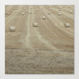 Rolling Harvest Canvas Print