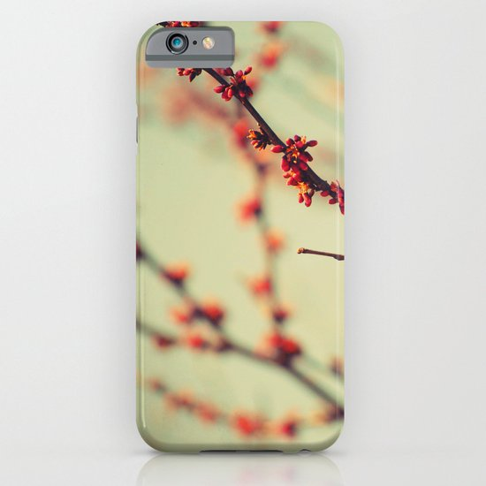 When spring was autumn... iPhone & iPod Case