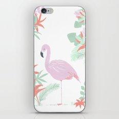 tropical flamingo iPhone & iPod Skin