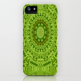 Love for the wild lilies if it is winter iPhone Case