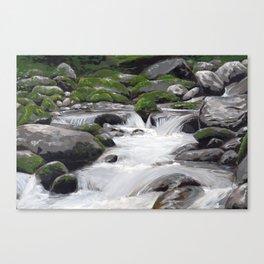 Waterville #4 Canvas Print