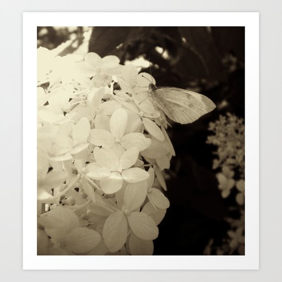 Petal Wings Art Print