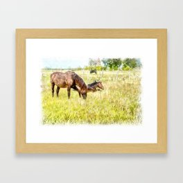 Horses Grazing in the Field.  Watercolor Painting Style. Framed Art Print