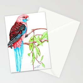 Blue Tail Parrot- Greenday Stationery Cards