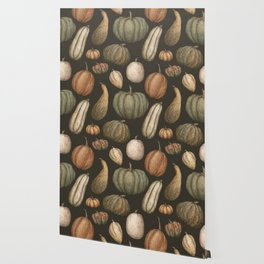 Pumpkins and Gourds Wallpaper