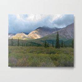 The Last Frontier 2, Denali National Park Metal Print