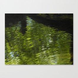 waterbuggy Canvas Print