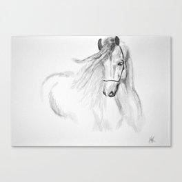 Black & White Horse Canvas Print