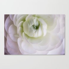 As the petals of a flower Canvas Print