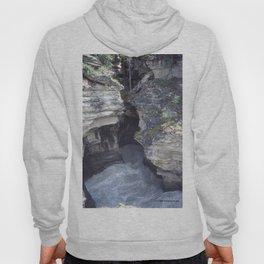 Athabasca Falls 4 Hoody
