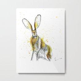 Jack Rabbit I Metal Print