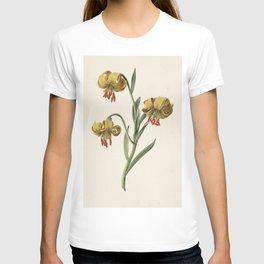 M. de Gijselaar - Branch with three yellow lilies (1834) T-shirt