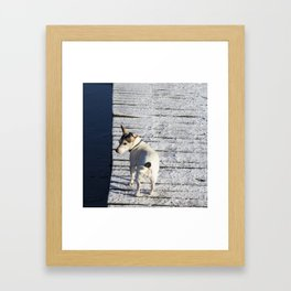 Dog going home Framed Art Print