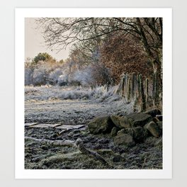Cold frosty morning Art Print