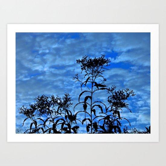 Blue Sky Silhouette Art Print
