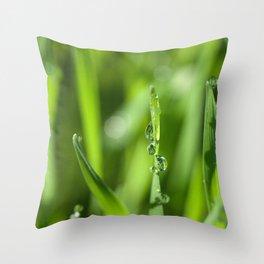 Morning dew 8548 Throw Pillow