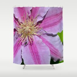 Pink Clematis by Teresa Thompson Shower Curtain