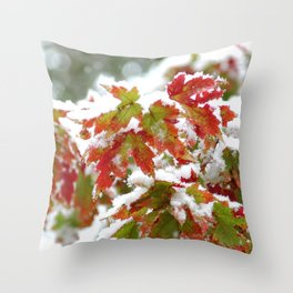 Three seasons in A Single Day Throw Pillow