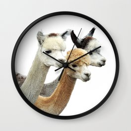 Alpaca Trio Wall Clock
