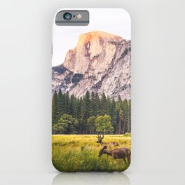 Mountain National Park iPhone Case