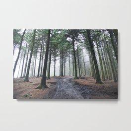 V A S T // Metal Print