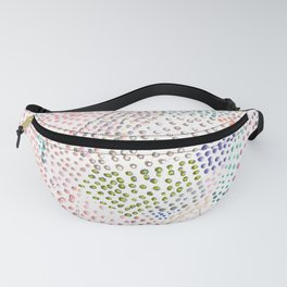 Mermaid Rainbow Dots Colorful Abstract Gems Fanny Pack