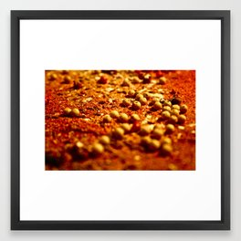 Spice Land: 2 Framed Art Print