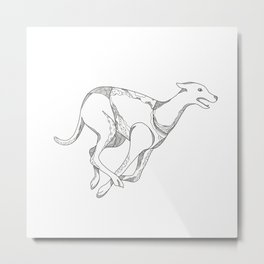 Greyhound Running Doodle Art Metal Print
