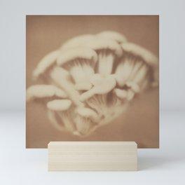 Funghi Mini Art Print