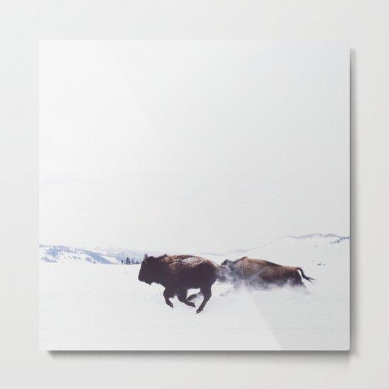 Wild Bison Running in Winter Metal Print