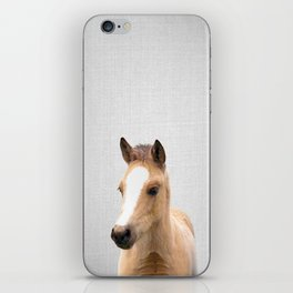 Baby Horse - Colorful iPhone Skin