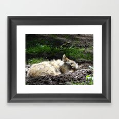 Let Sleeping Wolf Sleep Framed Art Print
