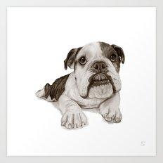 A Bulldog Puppy :: Brindle  Art Print