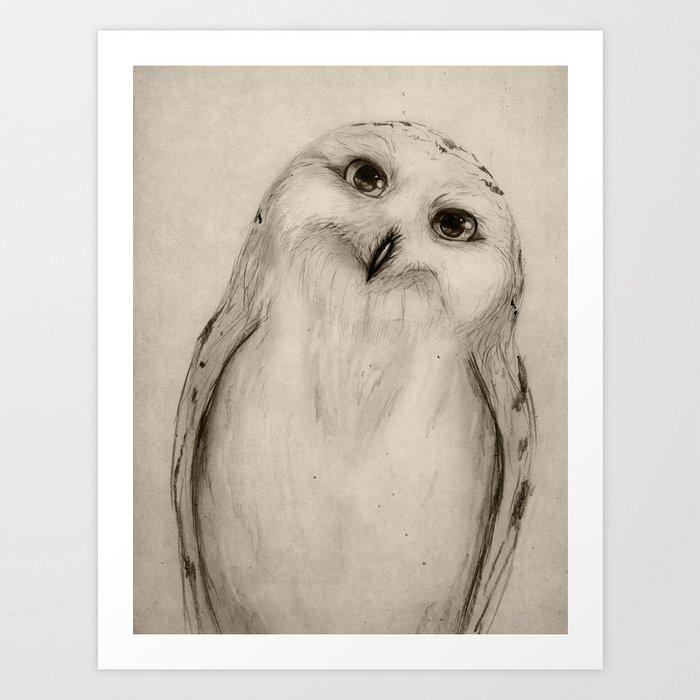 Snowy Owl Sketch Art Print By Isaiahstephens Society6