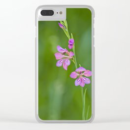 Beauty in nature, wildflower Gladiolus illyricus Clear iPhone Case
