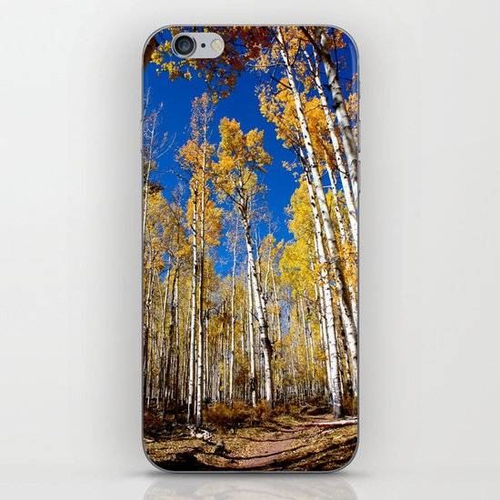 Enchiladas in the Trees 1 iPhone & iPod Skin