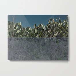 night cacti || collage Metal Print