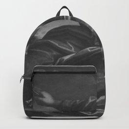 Paolo Veronese - Allegorie des Handels (Peperit discordia Foedus) Backpack