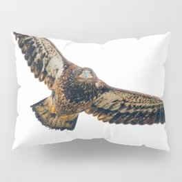 Young Bald Eagle in Breathtaking Flyby Pillow Sham