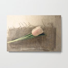 THE SIMPLE THINGS #1 Metal Print