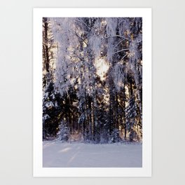 Snowy Winter Wonderland Art Print