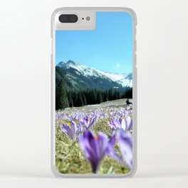 crocuses in the Chochołowska Valley Clear iPhone Case